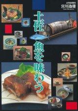 土佐魚を味わう